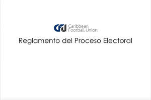 Electoral Process Guidelines (Spanish)